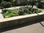 planter_beds3